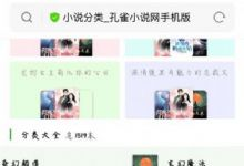 互站网48元买的小说程序源码 自动采集