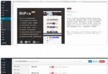 最新RiPro6.3.8 wordpress资源下载站主题 完整修复去后门 破解无加密